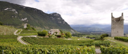 Le vignoble le plus dense de Savoie se trouve au sud-est de Chambéry. Cette photo est un panorama pris de l'appellation de Chignin